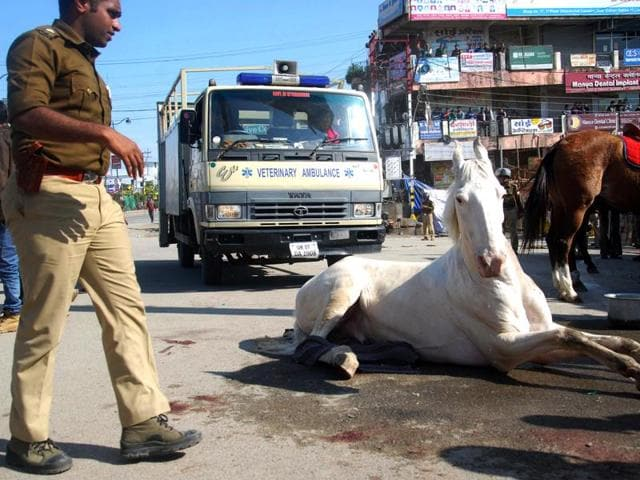 Police horse Shaktimaan got its leg fractured during a BJP rally at Uttarakhand assembly in Dehradun on Monday.
