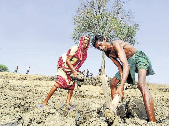 MGNREGA workers at an excavation site in a village in Kalahandi, Odisha.