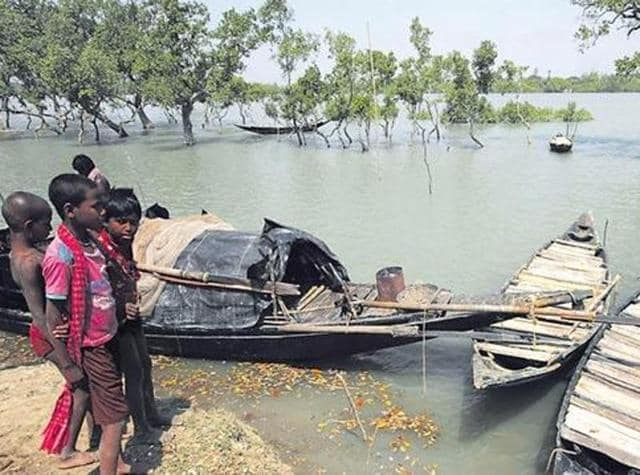 An explosion in the rat population in the Sundarbans has topped the list of concerns for voters.