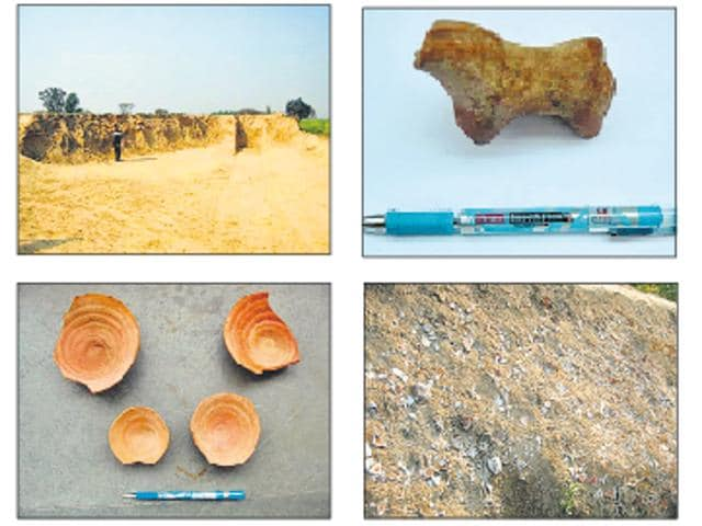 Artefacts were found when some MGNREGA workers were levelling the field of one Hari Singh on February 8. The sarpanch of the village informed the district administration about the recovery.
