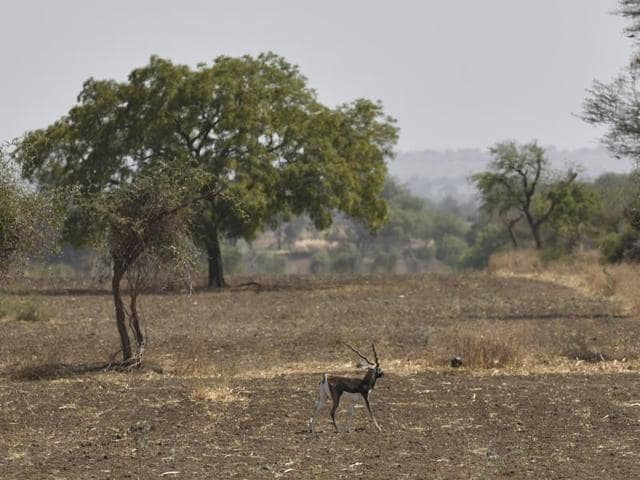 Marathwada,drought,water scarcity