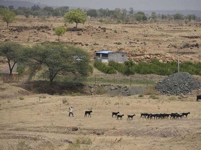 Of the total 1,133 farmer suicide cases reported across the eight districts of Marathwada last year, 301 were from Beed district.