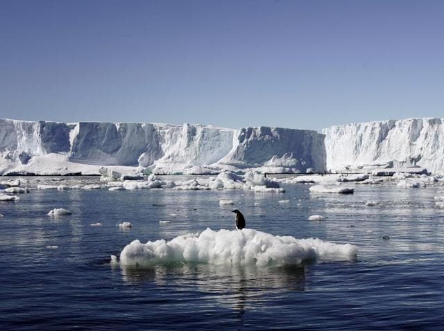 An Adelie penguin stands atop a block of melting ice near the French station at Dumont díUrville in East Antarctica.