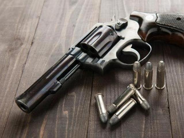Guns,Mumbai,Gun licences