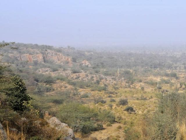 The National Green Tribunal (NGT) slapped a fine of Rs 1 lakh on three real estate firms for allegedly trying to develop more than 400 acres of forest land in Aravalli in Mangar Bani, a sacred grove in Gurgaon.