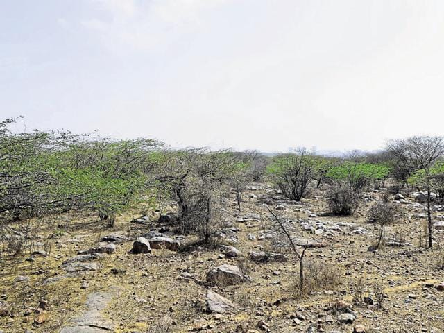 The Gurgaon administration has agreed to revise Natural Conservation Zone (NCZ) to include eco-sensitive areas such as the wastelands in the Aravalli foothills and paleo-channels (old nallahs).