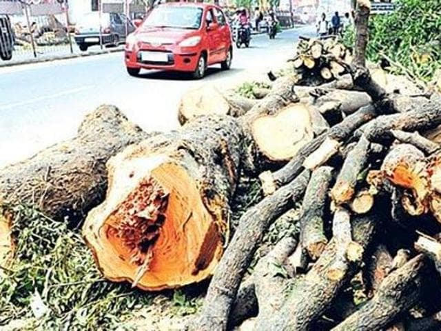The Comptroller and Auditor General (CAG) has unearthed a scam of Rs 1.36 crore in the forest department in awarding excess compensation to two villages for damaged trees following land acquisition.