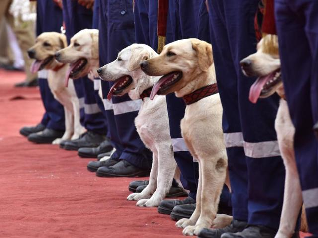 Thirty army-trained Labradors were inducted in the Delhi Police at a special ceremony on Monday.
