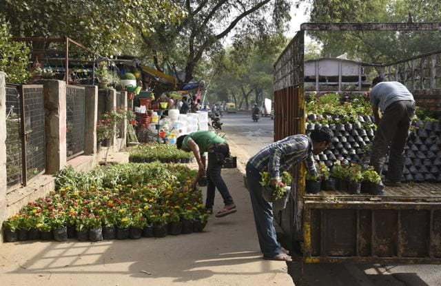 At least five nurseries near Qutab Minar Metro station, that have a range of seasonal flowering plants, are popular among garden enthusiasts.