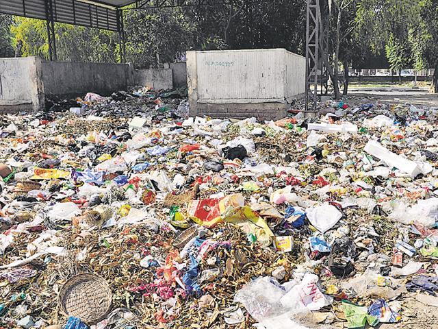 Mounds of garbage at Phase 1 in SAS Nagar.