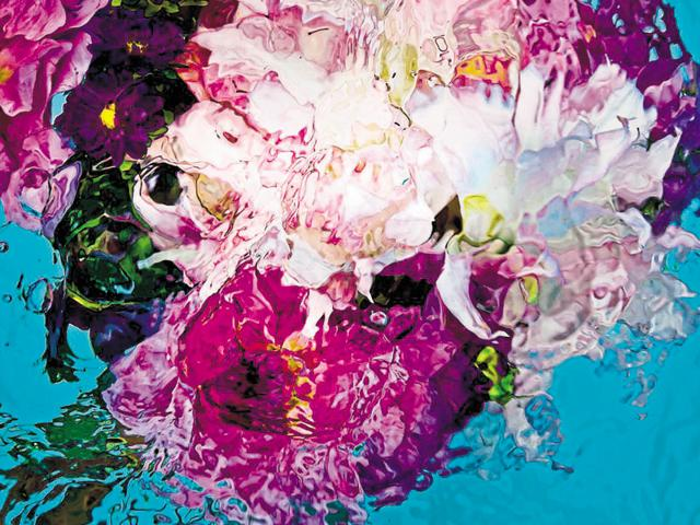 French fashion and lifestyle photographer Gilles Bensimon has moved away from his star-studded portfolio to shoot abstract patterns, giving a new perspective of depicting flowers in art.Seen here, Untitled Number One, 2011.(Gilles Bensimon/ Hamiltons Gallery)