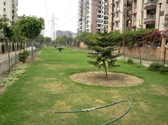 Residents of Sector 18, Vasundhara have turned a neglected area in the sector into a lush green park.