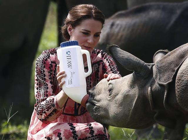 Royal India visit,Kate Middleton,Kate middleton in India