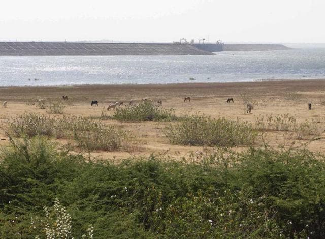 Rs97,000cr required to complete 515 irrigation projects: CAG report