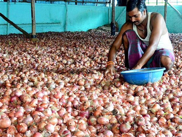 The surplus is bad news for farmers, many of whom have been also abandoning sacks of bulb at the market after failing to get buyers.