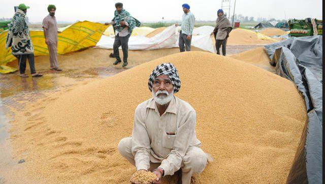 Local media had earlier reported about the discrepancy in food grain stockpiles in warehouses in Punjab purchased through bank loans from several state-owned banks.