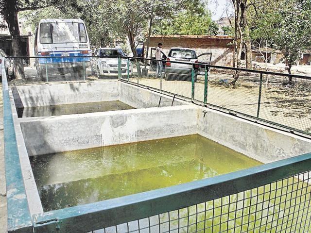 Punjab govt,fish festival,Ludhiana