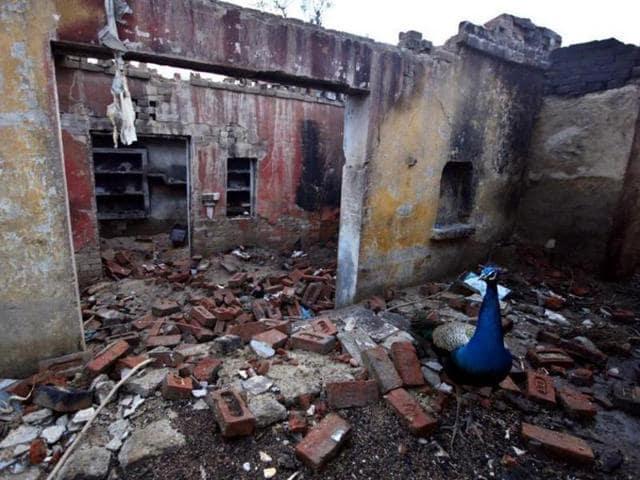 Gujarat HC,Rioting mob,Communal riots