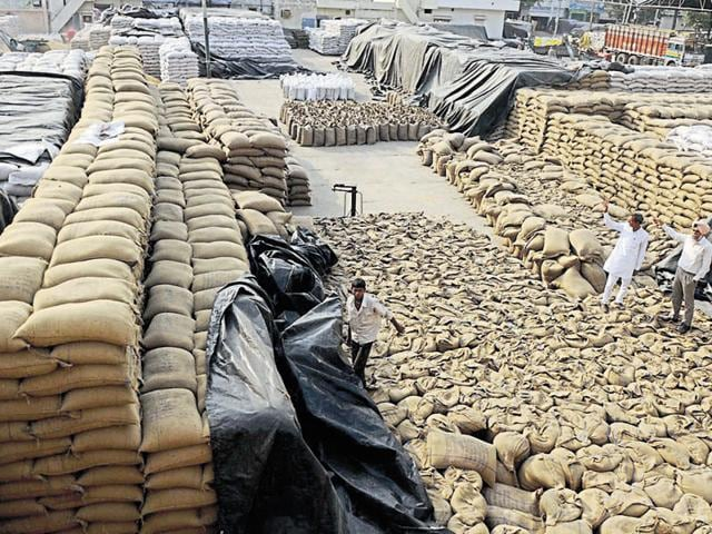 Tonnes of wheat lying in the open at the new grain market in Patiala on Monday.