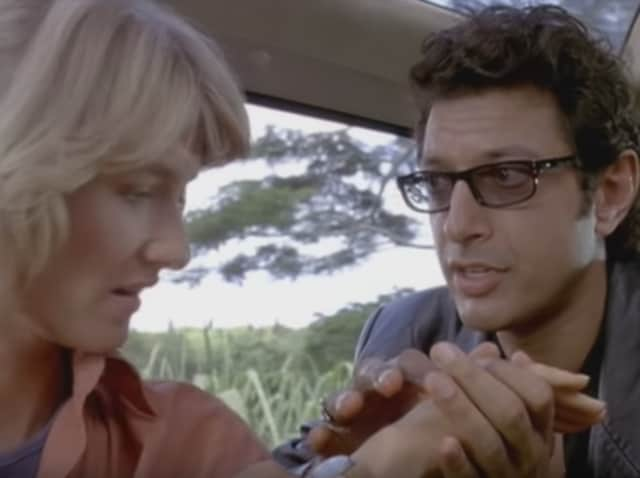 """""""I'm nothing if not open - I'm like an open-faced sandwich. My door is not always open. I took the door off. I removed the hinges from the door. I'm too open. I'm like a chicken piccata,"""" Goldblum said."""