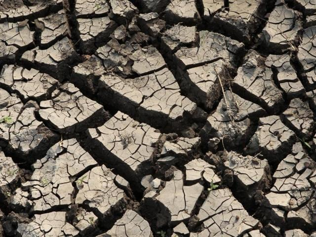 Hyderabad is facing a major water supply crisis, with all four reservoirs supplying water to the city drying up for the first time in 30 years(HT Photo)
