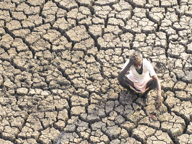 In total, 10 states, including Maharashtra and Karnataka, have declared drought in their parts.