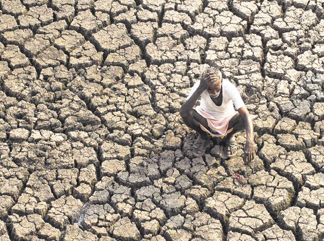 657 farmers have killed themselves in Maharashtra from January to March.(AP)