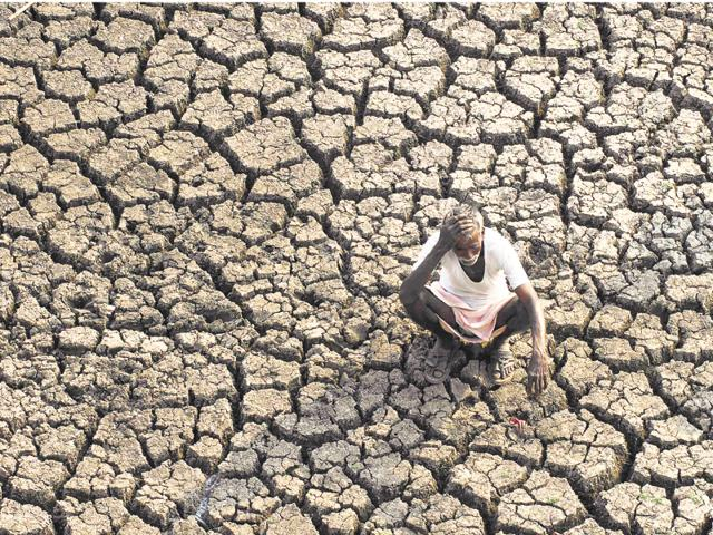 A farmer sits on a dried-up bed of a water body on the outskirts of Hyderabad, India.