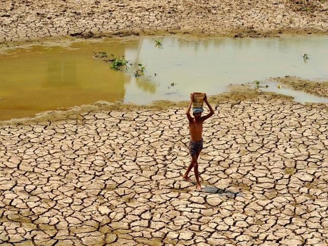 A man fetches water from a rapidly dying lake in Odisha's Bhubaneswar.