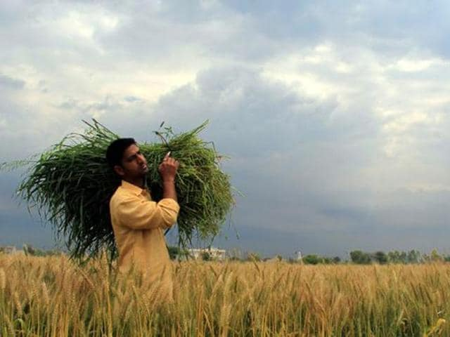 Single-window facility,Agriculture yield,Mobile app