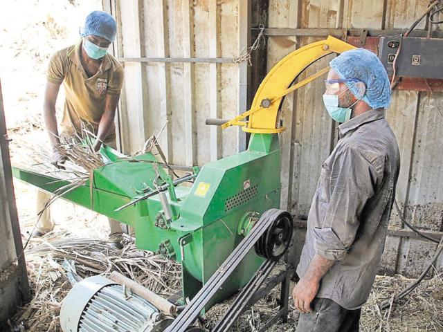The BMC converts garden waste such as grass, leaves into fuel pellets in its first-of-its-kind facility on a 4,000-sqft plot near Damodar Park, off LBSRoad.