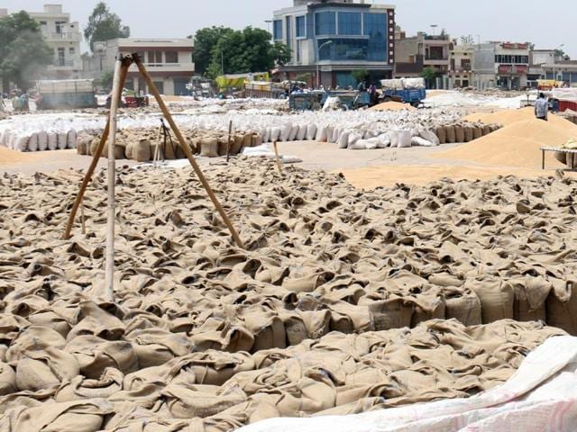 Unlifted wheat stock at the grain market in Bathinda on Monday.
