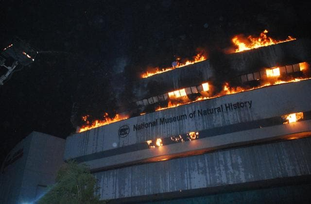 Fire at delhi s natural history museum what may have been for Facts about house fires