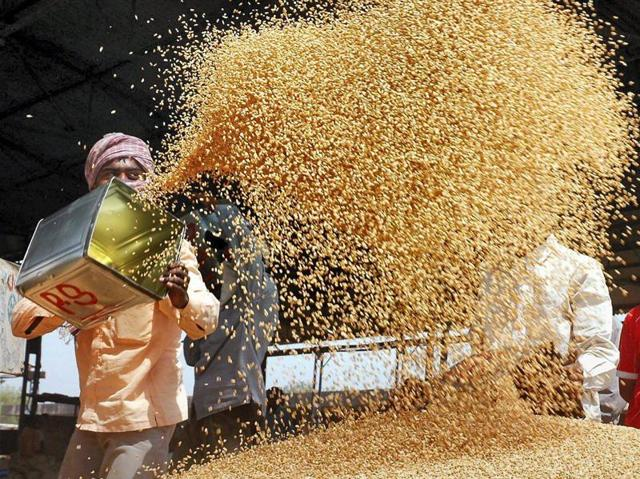 Farmers husk wheat at a market in Amritsar. Banks are worried that loans to Punjab government to procure foodgrain may turn bad.