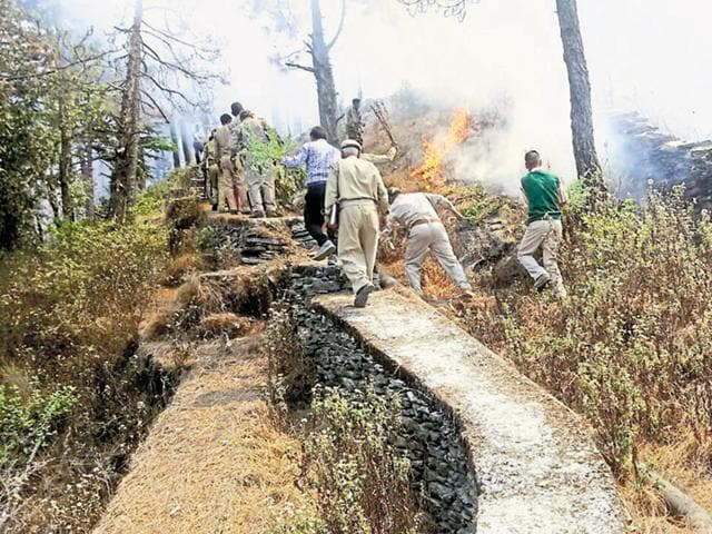 Fire fighters are battling with three things — dry elephant dung that catches fire, strong winds and high temperature.