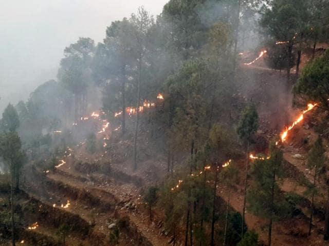 Fire incidents in Uttarakhand have affected forests in districts such as Pauri Garhwal, Nainital, Pithoragarh, Bageshwar and Chamoli.