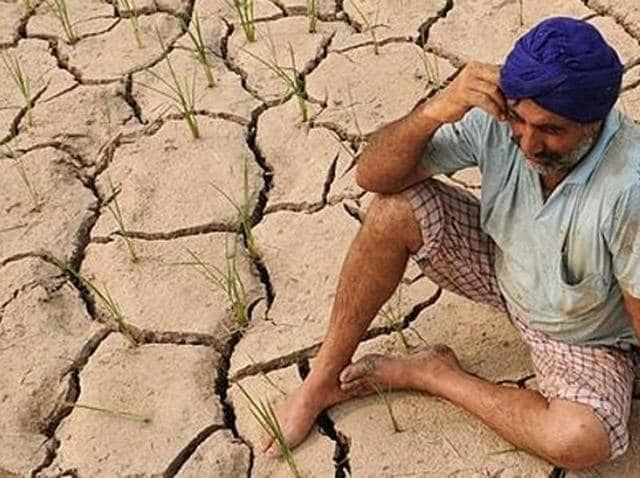 Unable to bear the burden of repaying their crop-related loans and failing to make ends meet, as many as 20 farmers reportedly committed suicide between April 21 and 28 alone.