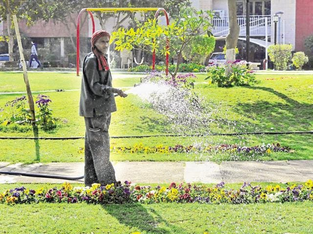Gurgaon residents are told to uses buckets to water plants.