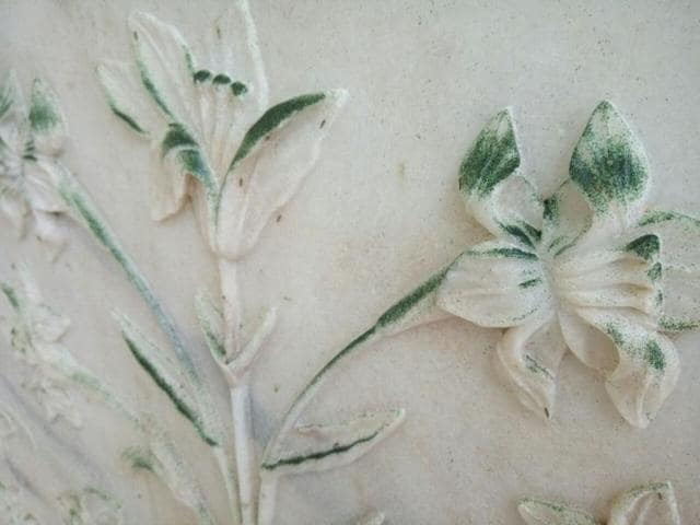 Not only marble, the red stone of the Taj Mahal is also turning green. And now the Archeological Survey of India is zeroing in on river pollution as the cause of this change of hue.