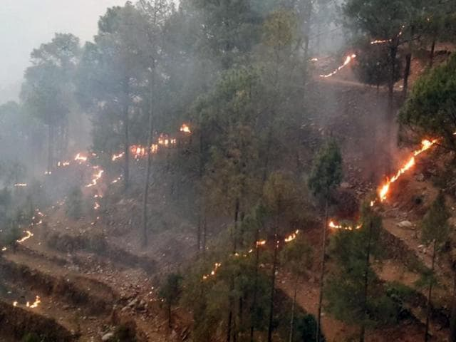 Besides ravaging forests, the fire has killed four people, including two women, in Uttarkashi and a woman and her child in Nainital district.(Vinay Santosh Kumar/HT Photo)
