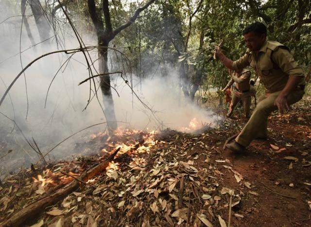 The Prime Minister's Office has earmarked Rs.5 crore for the fire-fighting operation