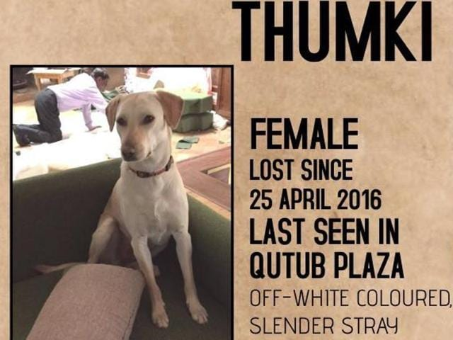 An online campaign is underway to reunite Thumki with its owners in Gurgaon.