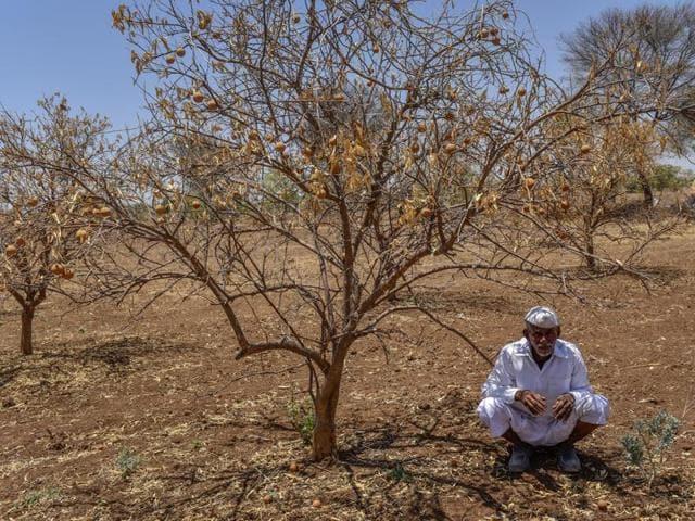 irrigation projects,drought,Maharashtra