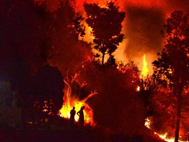 Uttarakhand forest fires,Environment minister Prakash Javadekar,Uttarakhand tiger reserves