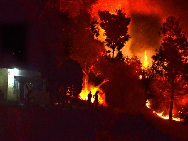 Around 2,300 hectares of forested land across 13 districts of Uttarakhand have already been gutted until now.