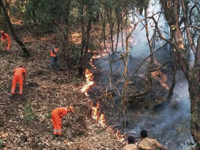 NDRF personnel try to douse the fire that has engulfed forests in Uttarakhand.