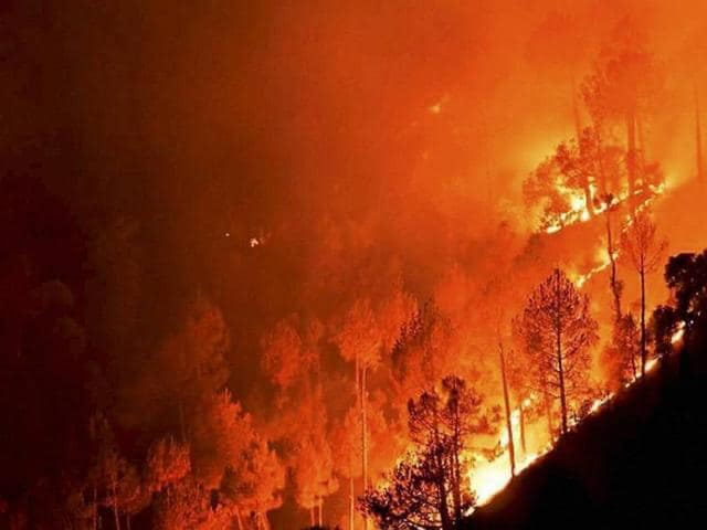 A major fire in the forests at Ahirikot in Srinagar, Uttarakhand on Monday.