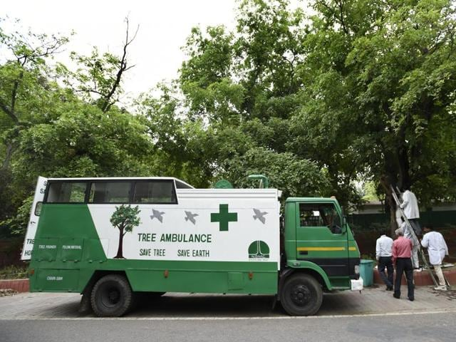 A team of plant protection officials at work with a tree ambulance at Tughlak Lane in New Delhi.