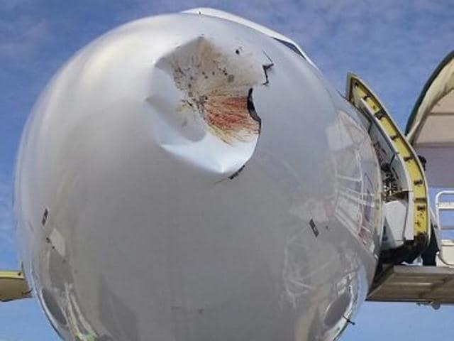 Vistara's Bhubaneswar-bound aircraft was hit by a bird on Thursday before landing at the Biju Patnaik International Airport.