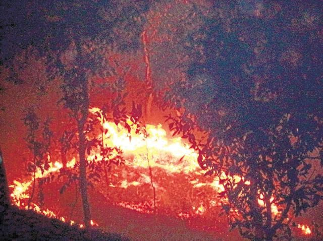 Forest fire in Pauri district on Tuesday night. Chief secretary says the government will probe whether funds were used to work on fire lines in severely affected districts.